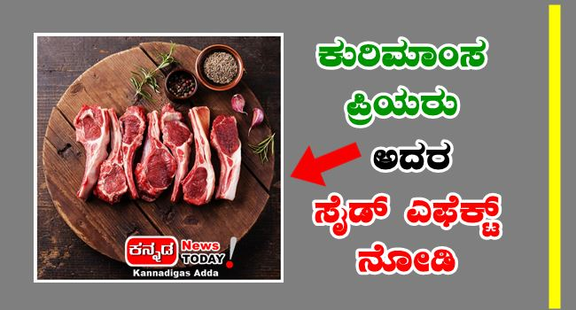 Must Know, Side Effects of Lamb or sheep meat