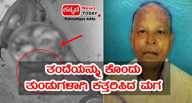 son killed his father and cut him to pieces- crime news in kannada